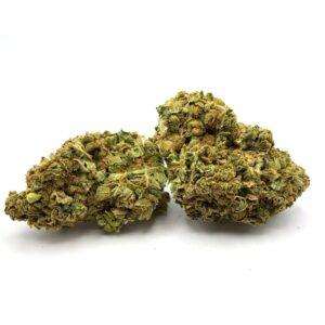 Sage & Sour - Sativa Hybrid Strain - 17% THC
