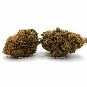 Willy Wonka - Sativa Hybrid Strain - 21% THC